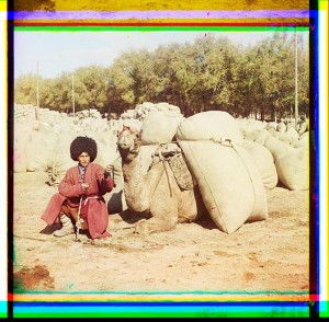 Man with camel loaded with packs.
